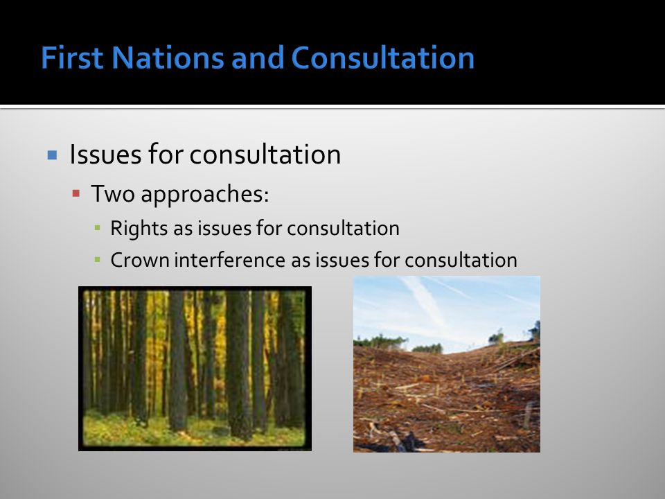  Issues for consultation  Two approaches: ▪ Rights as issues for consultation ▪ Crown interference as issues for consultation