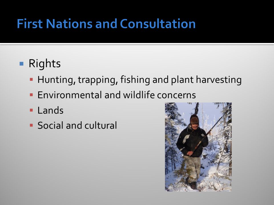  Rights  Hunting, trapping, fishing and plant harvesting  Environmental and wildlife concerns  Lands  Social and cultural