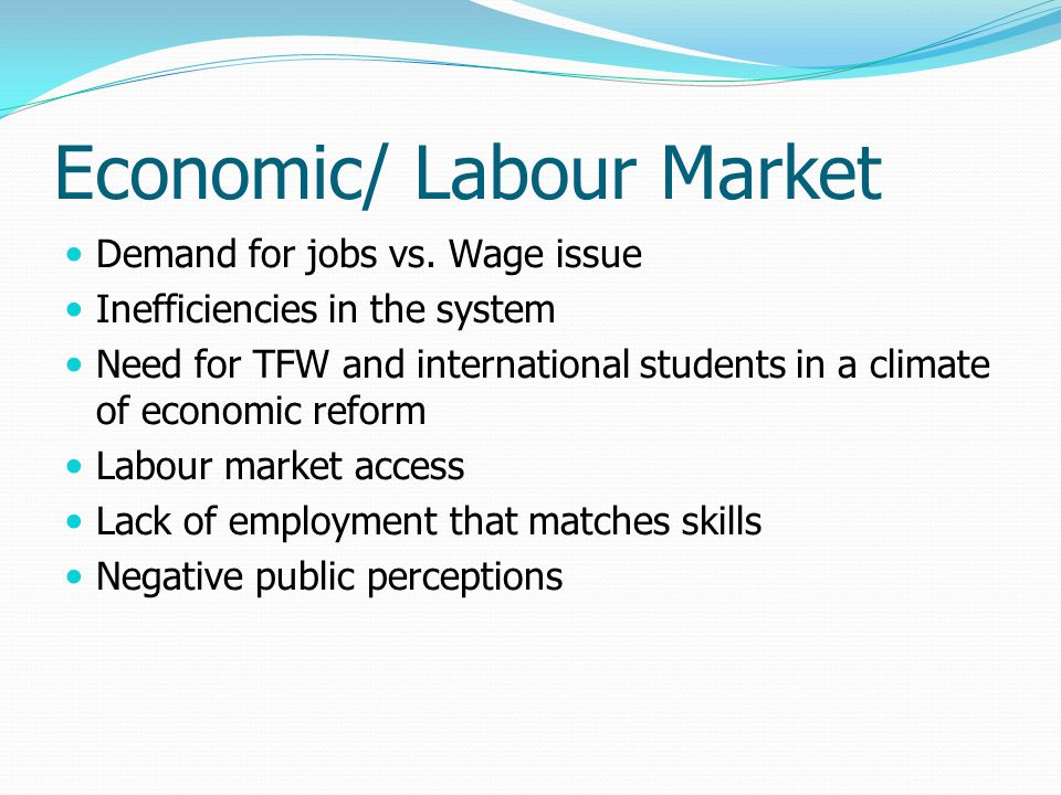 Economic/ Labour Market Demand for jobs vs. Wage issue Inefficiencies in the system Need for TFW and international students in a climate of economic r