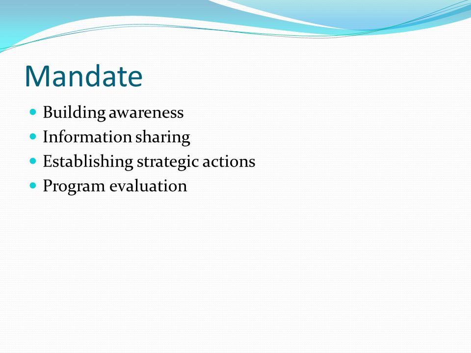 Mandate Building awareness Information sharing Establishing strategic actions Program evaluation