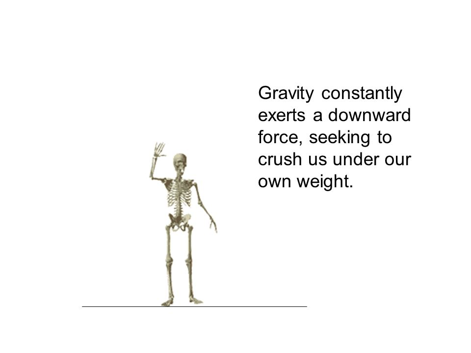 GRAVITY Gravity constantly exerts a downward force, seeking to crush us under our own weight.