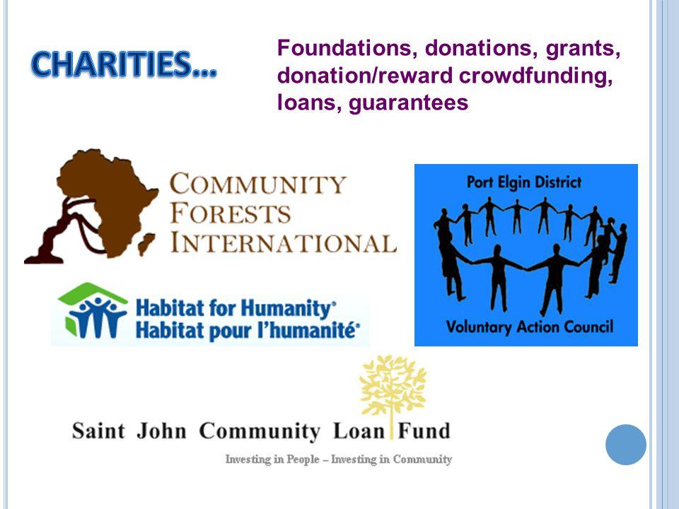 Foundations, donations, grants, donation/reward crowdfunding, loans, guarantees