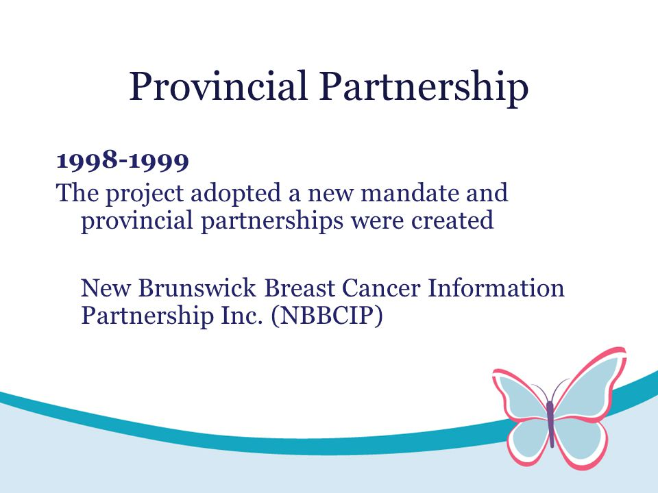Provincial Partnership 1998-1999 The project adopted a new mandate and provincial partnerships were created New Brunswick Breast Cancer Information Partnership Inc.