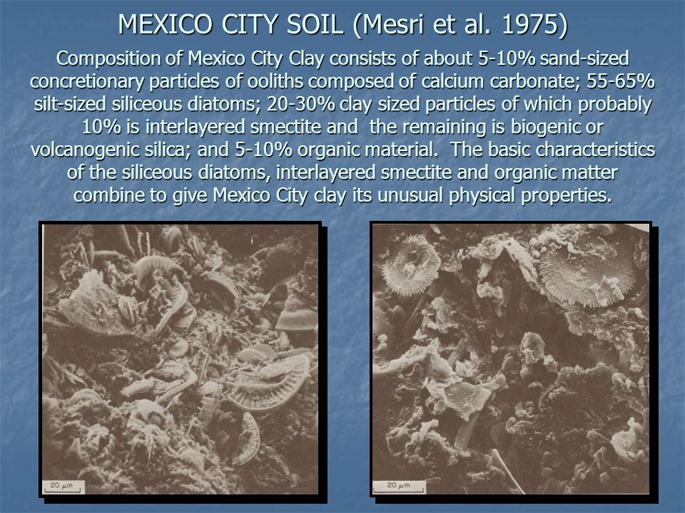 MEXICO CITY SOIL (Mesri et al. 1975) Composition of Mexico City Clay consists of about 5-10% sand-sized concretionary particles of ooliths composed of