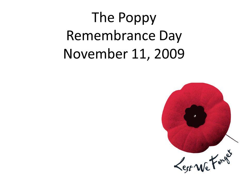 The Poppy Remembrance Day November 11, 2009