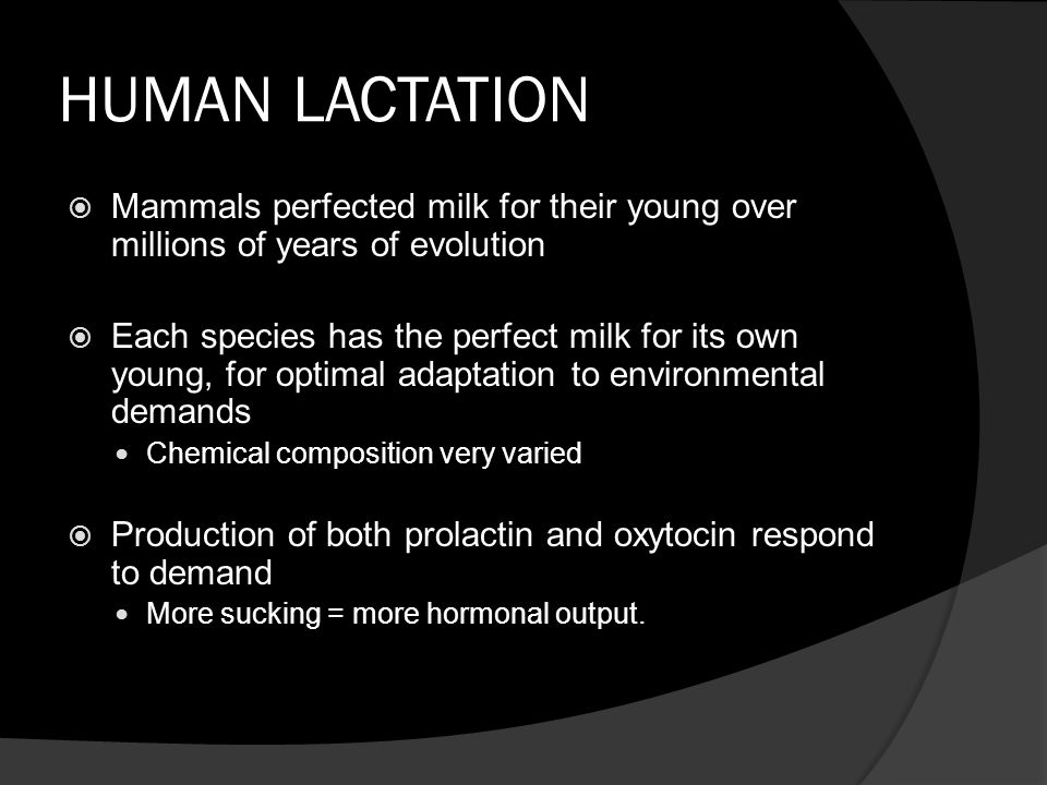 HUMAN LACTATION  Mammals perfected milk for their young over millions of years of evolution  Each species has the perfect milk for its own young, for optimal adaptation to environmental demands Chemical composition very varied  Production of both prolactin and oxytocin respond to demand More sucking = more hormonal output.