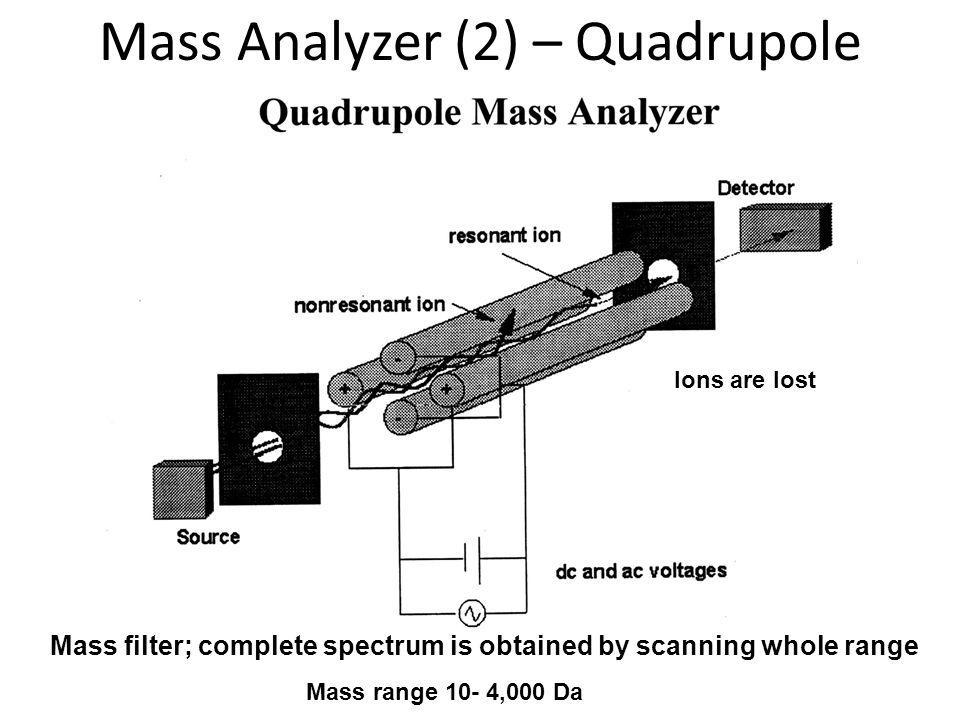 Mass filter; complete spectrum is obtained by scanning whole range Ions are lost Mass range 10- 4,000 Da Mass Analyzer (2) – Quadrupole