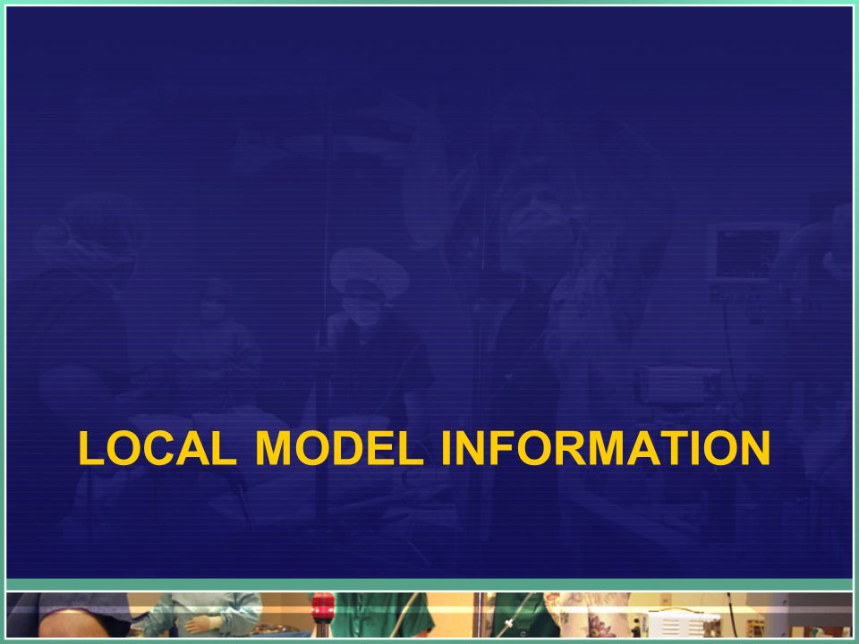 LOCAL MODEL INFORMATION
