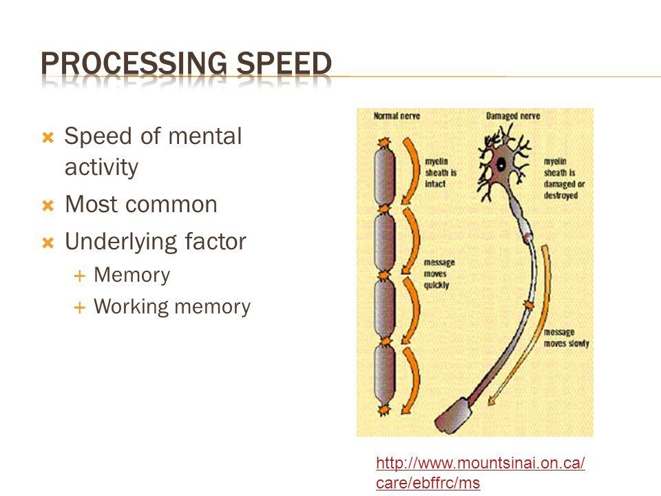  Speed of mental activity  Most common  Underlying factor  Memory  Working memory http://www.mountsinai.on.ca/ care/ebffrc/ms