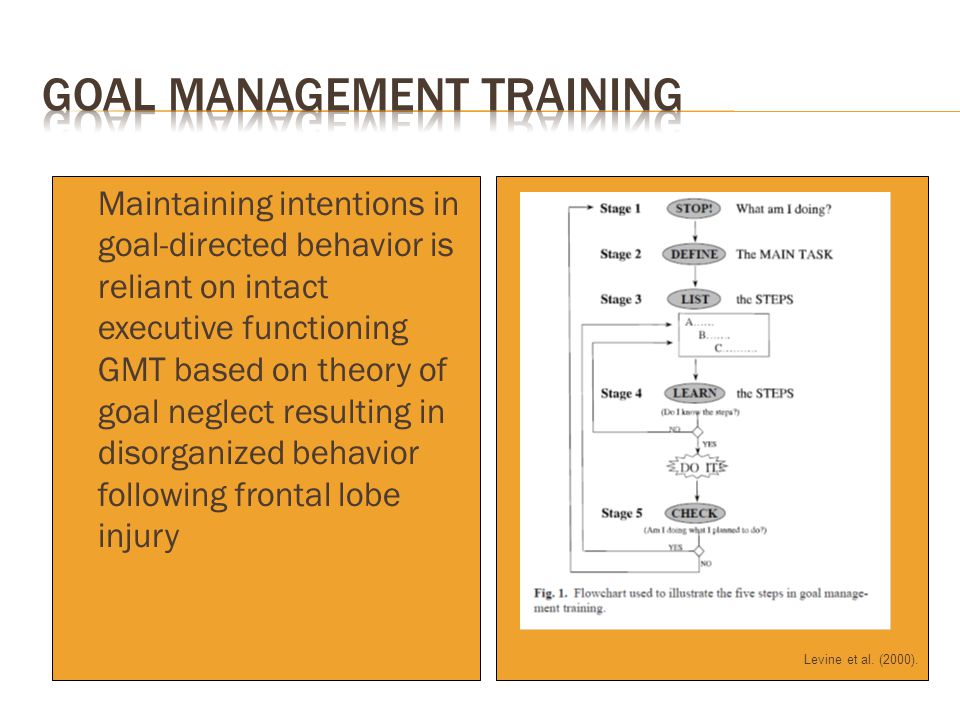 Levine et al. (2000).  Maintaining intentions in goal-directed behavior is reliant on intact executive functioning  GMT based on theory of goal negl