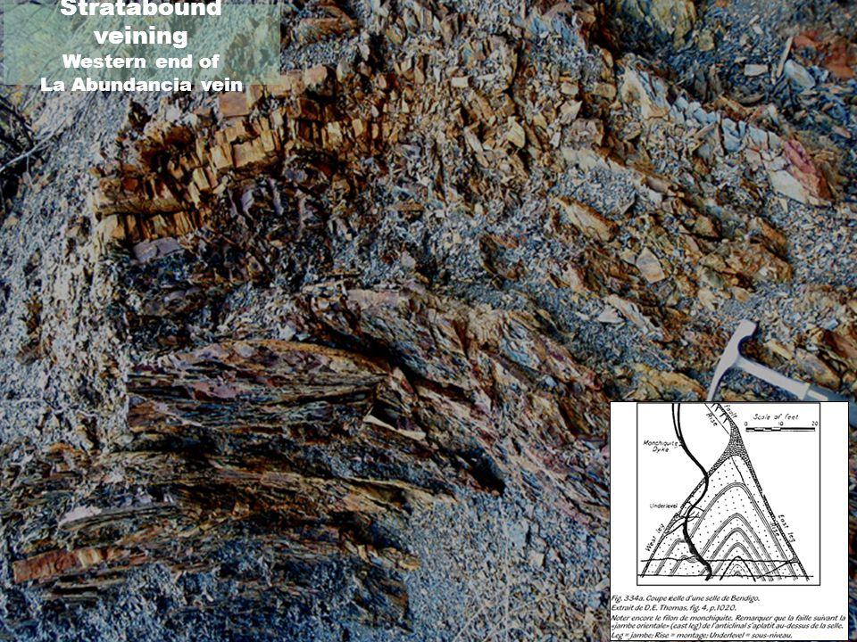 Stratabound veining Western end of La Abundancia vein