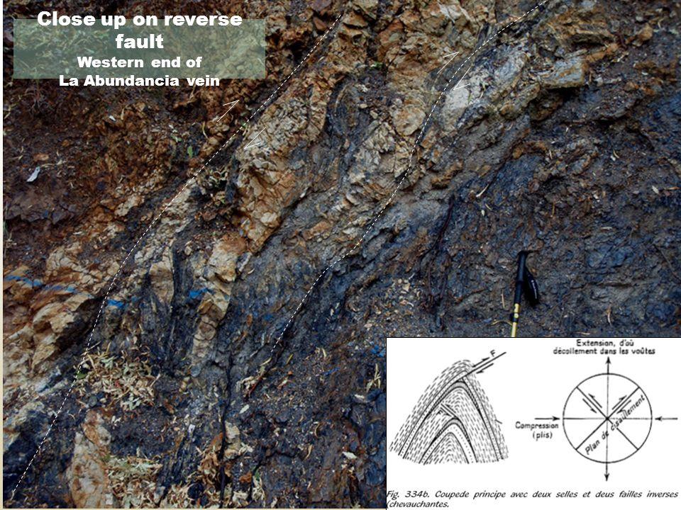 Close up on reverse fault Western end of La Abundancia vein