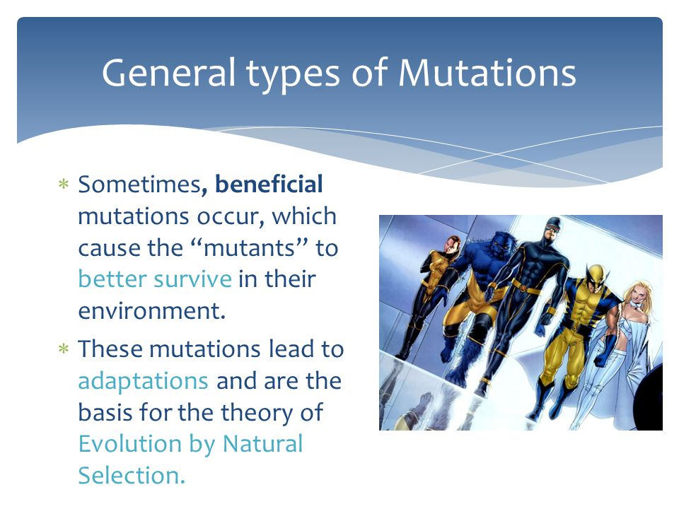 """General types of Mutations  Sometimes, beneficial mutations occur, which cause the """"mutants"""" to better survive in their environment.  These mutation"""