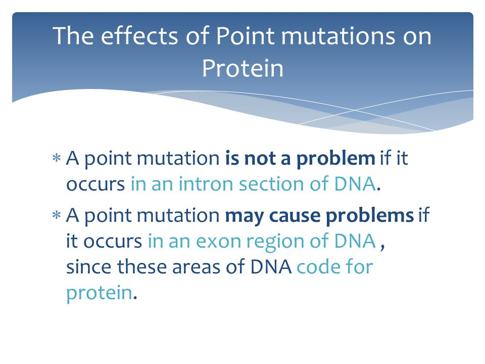  A point mutation is not a problem if it occurs in an intron section of DNA.  A point mutation may cause problems if it occurs in an exon region of