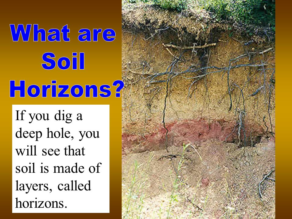 If you dig a deep hole, you will see that soil is made of layers, called horizons.