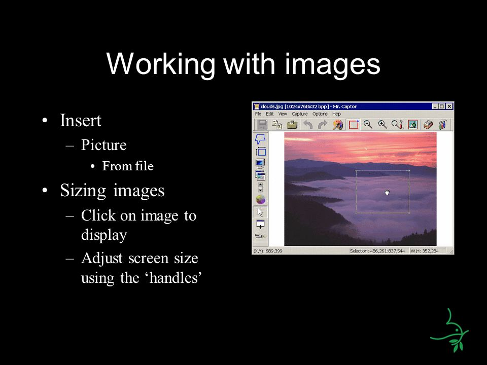 Working with images Insert –Picture From file Sizing images –Click on image to display –Adjust screen size using the 'handles'