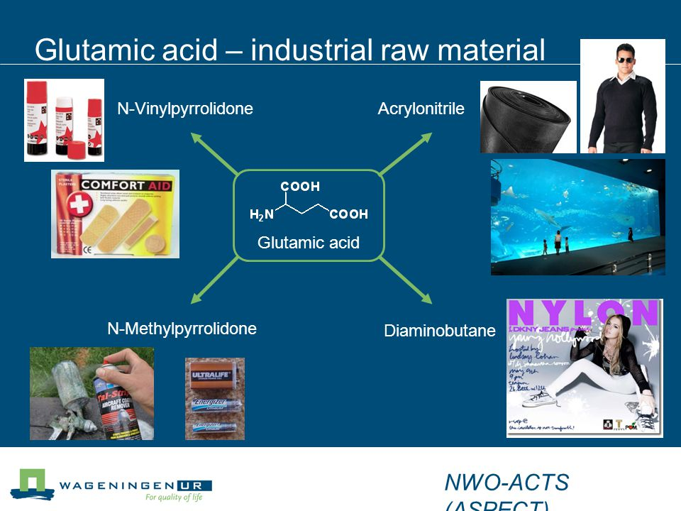 Glutamic acid – industrial raw material Diaminobutane Acrylonitrile N-Methylpyrrolidone N-Vinylpyrrolidone Glutamic acid NWO-ACTS (ASPECT)