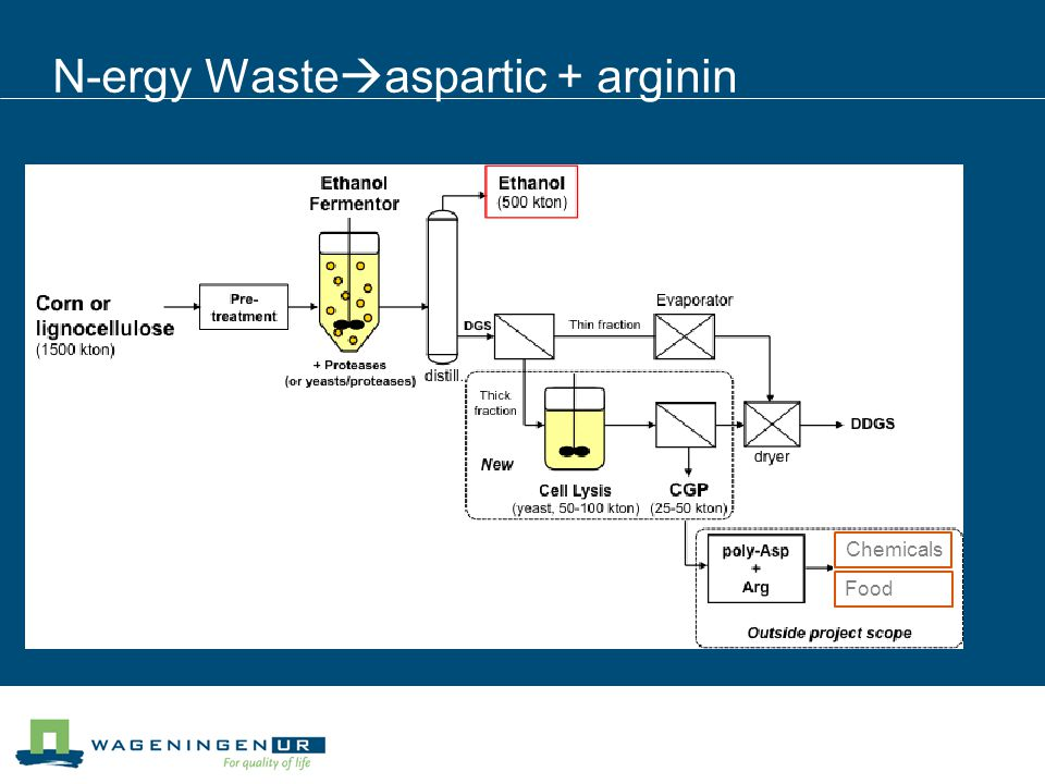 N-ergy Waste  aspartic + arginin Chemicals Food
