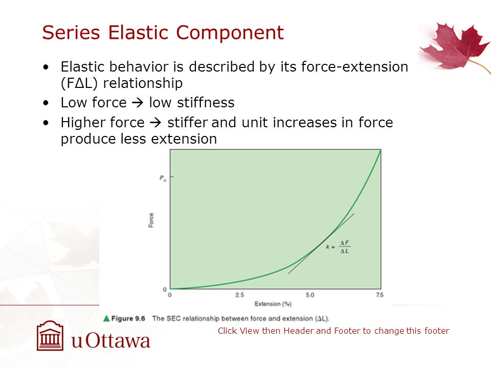 Series Elastic Component Elastic behavior is described by its force-extension (FΔL) relationship Low force  low stiffness Higher force  stiffer and unit increases in force produce less extension Click View then Header and Footer to change this footer
