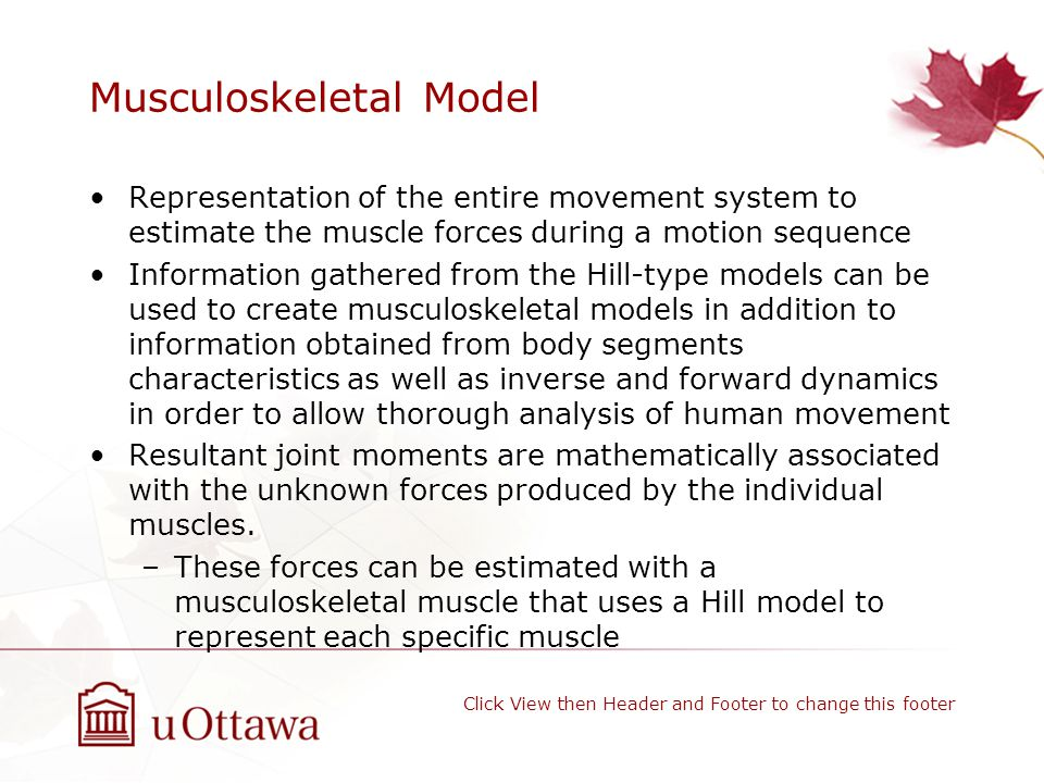 Musculoskeletal Model Representation of the entire movement system to estimate the muscle forces during a motion sequence Information gathered from the Hill-type models can be used to create musculoskeletal models in addition to information obtained from body segments characteristics as well as inverse and forward dynamics in order to allow thorough analysis of human movement Resultant joint moments are mathematically associated with the unknown forces produced by the individual muscles.