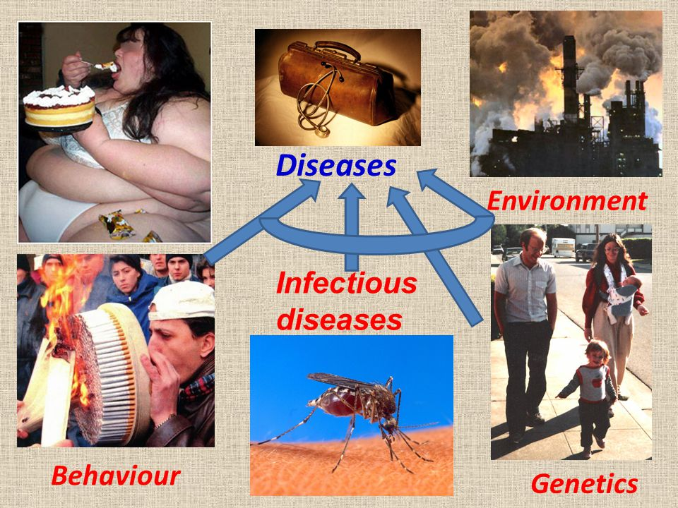 Behaviour Diseases Environment Genetics Infectious diseases