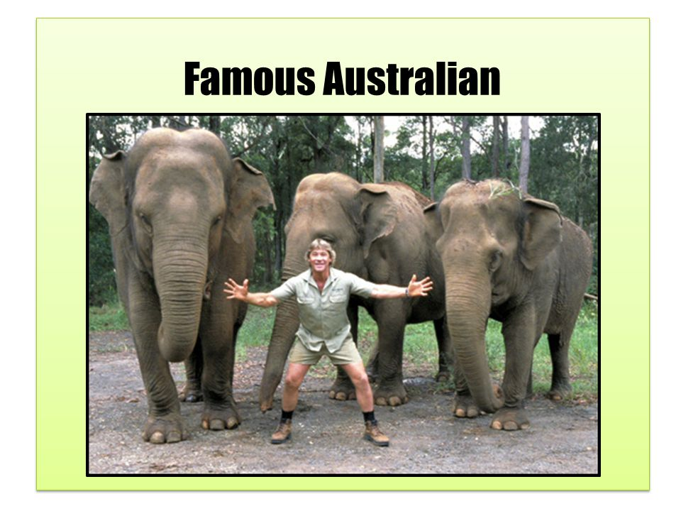 Steve Irwin was famous for his television series, The Crocodile Hunter.