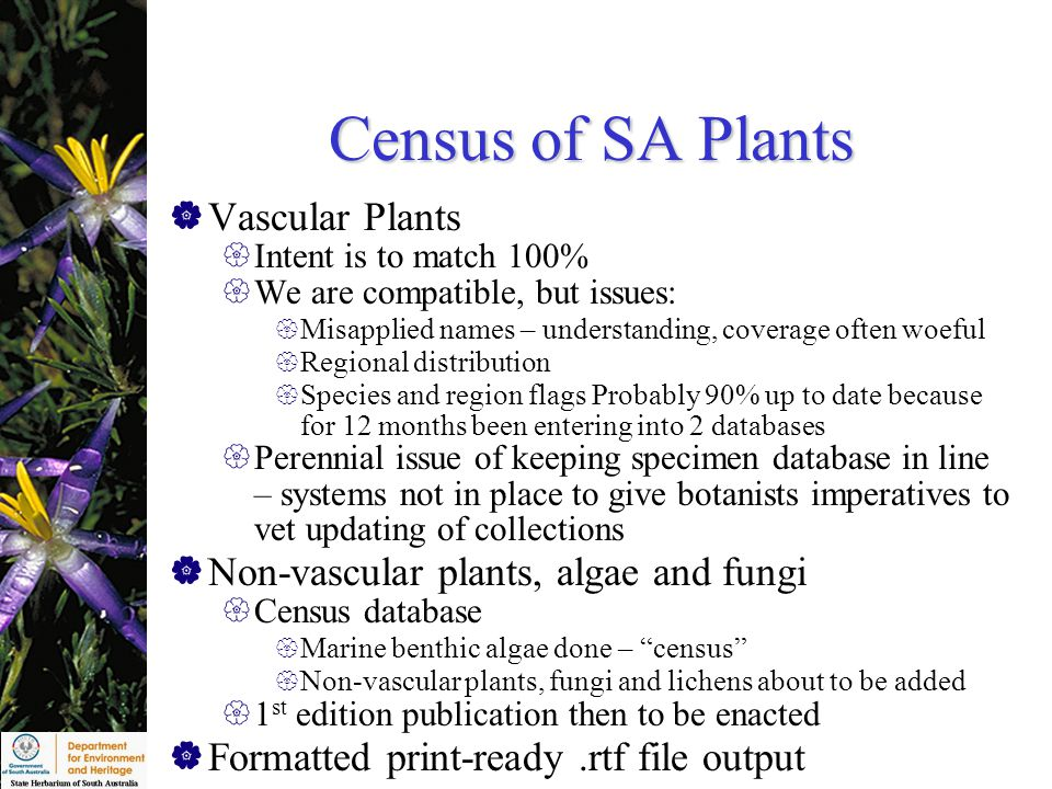 Census of SA Plants  Vascular Plants  Intent is to match 100%  We are compatible, but issues:  Misapplied names – understanding, coverage often woeful  Regional distribution  Species and region flags Probably 90% up to date because for 12 months been entering into 2 databases  Perennial issue of keeping specimen database in line – systems not in place to give botanists imperatives to vet updating of collections  Non-vascular plants, algae and fungi  Census database  Marine benthic algae done – census  Non-vascular plants, fungi and lichens about to be added  1 st edition publication then to be enacted  Formatted print-ready.rtf file output