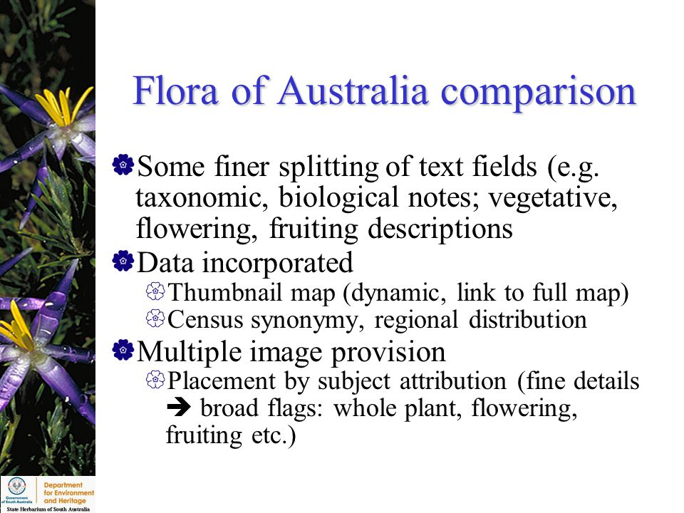 Flora of Australia comparison  Some finer splitting of text fields (e.g.