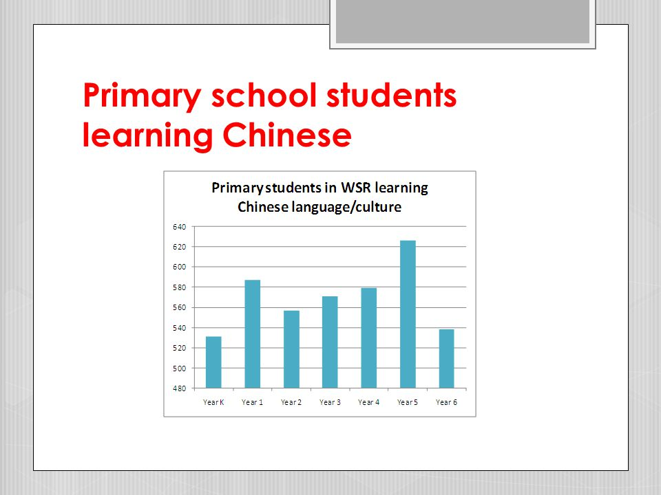 Chinese language and culture programs in primary schools