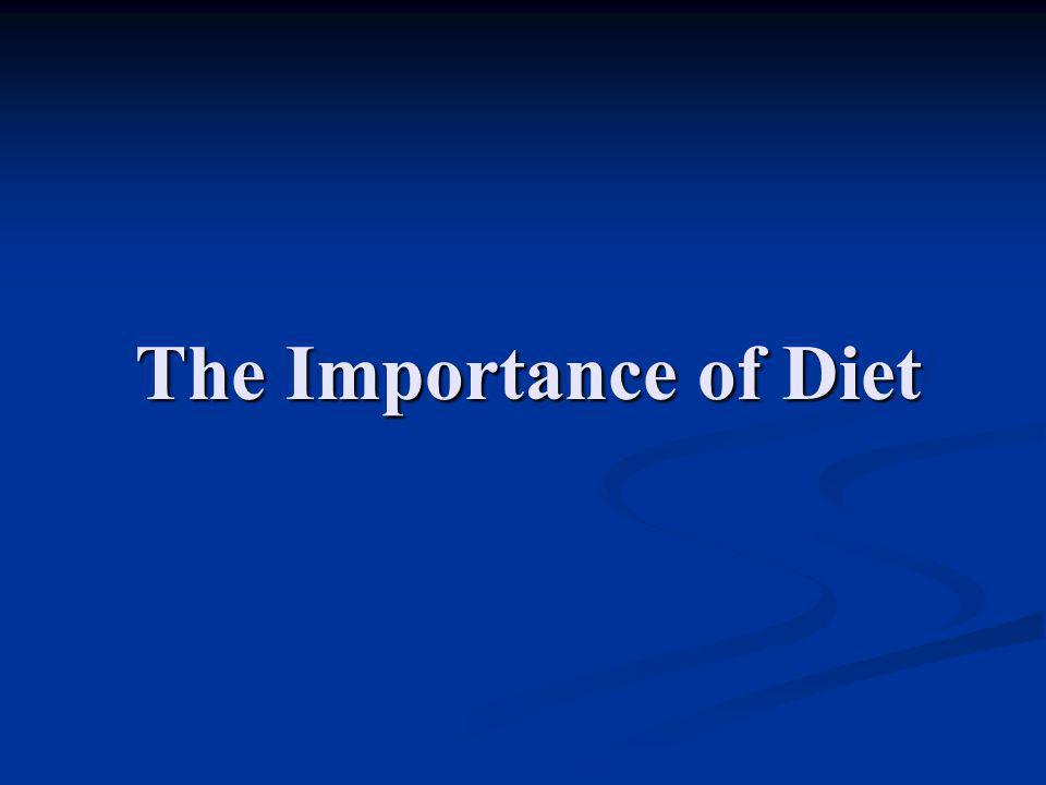 The Importance of Diet
