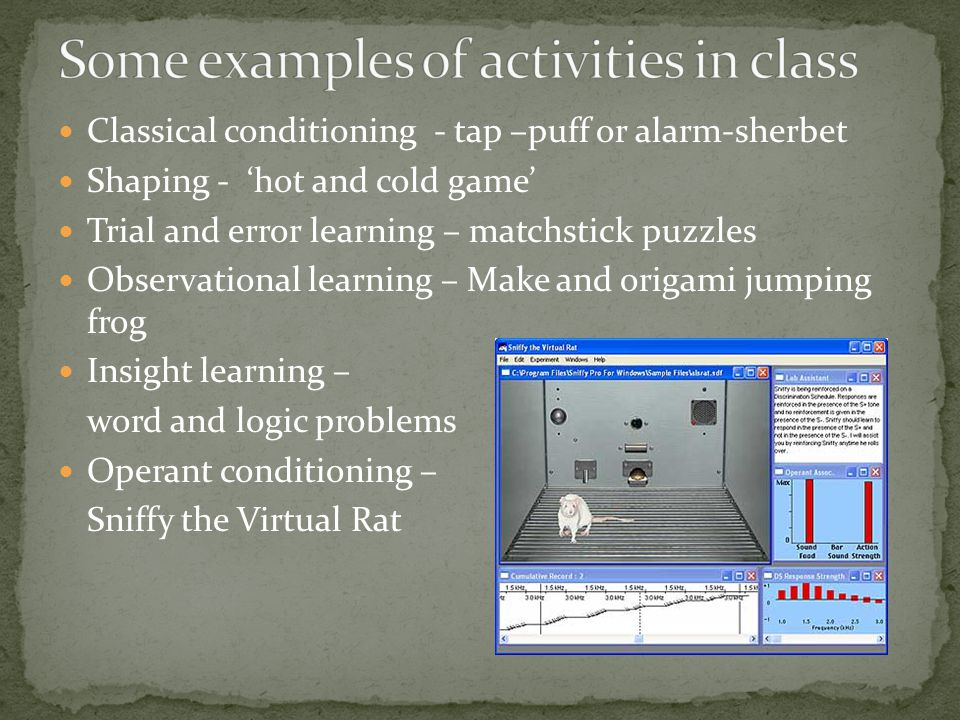 Classical conditioning - tap –puff or alarm-sherbet Shaping - 'hot and cold game' Trial and error learning – matchstick puzzles Observational learning – Make and origami jumping frog Insight learning – word and logic problems Operant conditioning – Sniffy the Virtual Rat