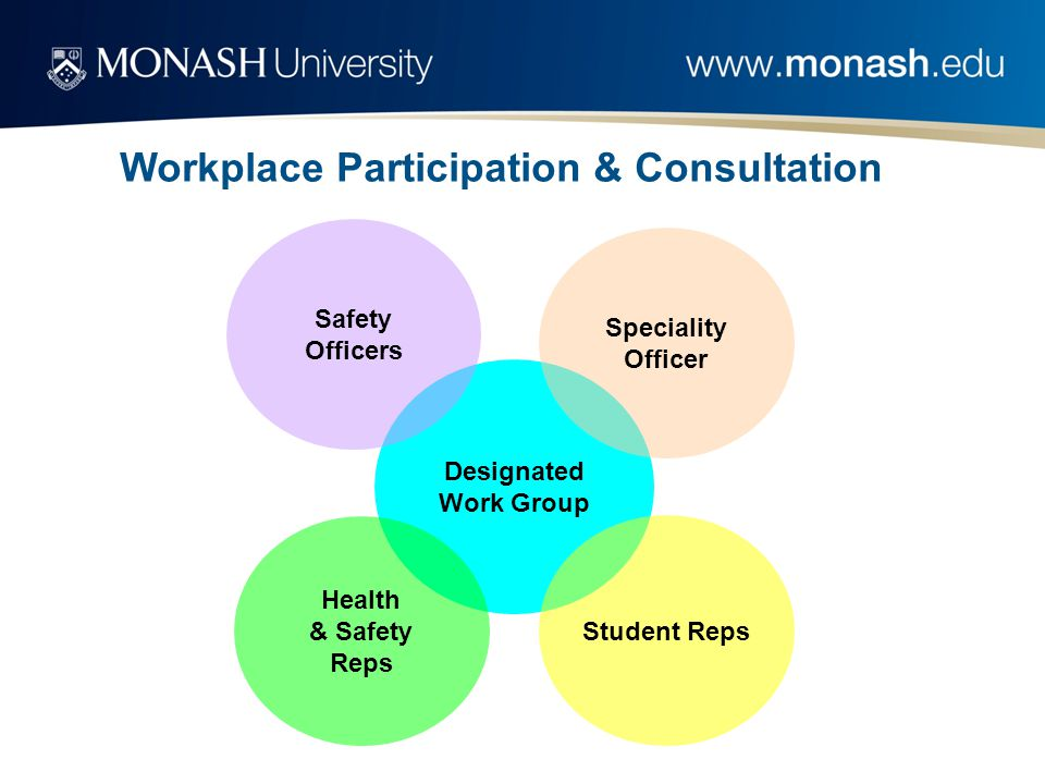 Designated Work Group Safety Officers Health & Safety Reps Speciality Officer Student Reps Workplace Participation & Consultation