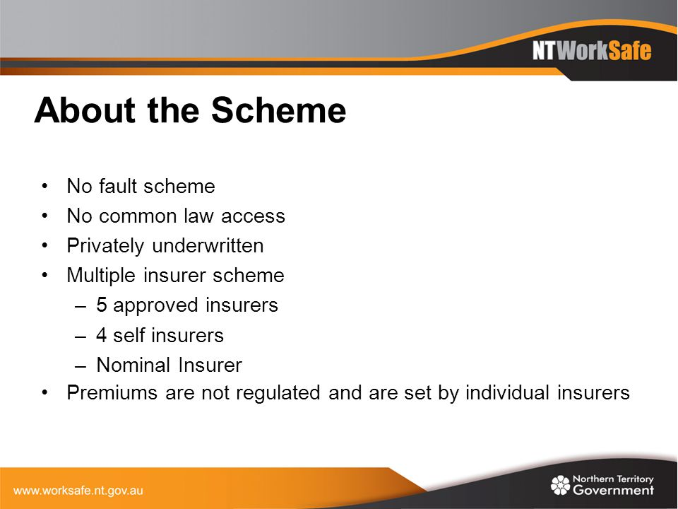 About the Scheme No fault scheme No common law access Privately underwritten Multiple insurer scheme –5 approved insurers –4 self insurers –Nominal In
