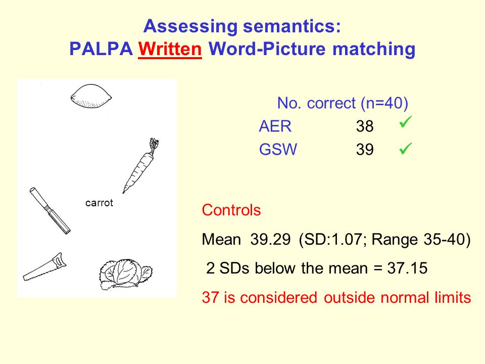Assessing semantics: PALPA Written Word-Picture matching No.