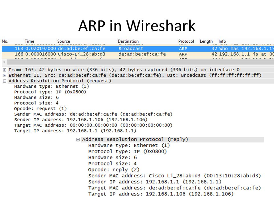 ARP in Wireshark