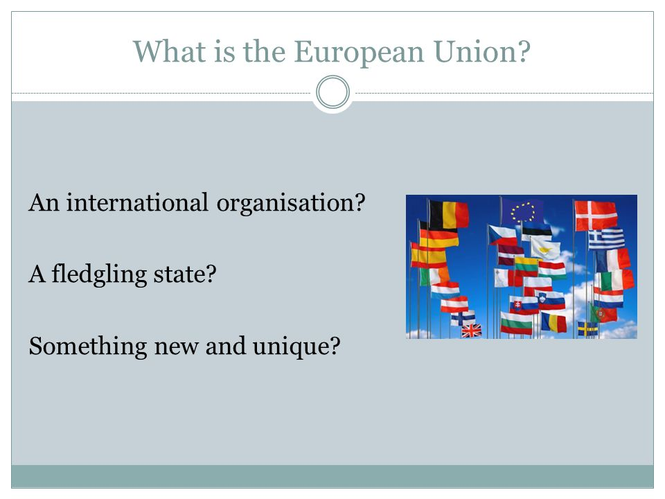 What is the European Union. An international organisation.