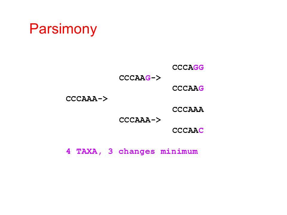 Parsimony CCCAGG CCCAAG-> CCCAAG CCCAAA-> CCCAAA CCCAAA-> CCCAAC 4 TAXA, 3 changes minimum