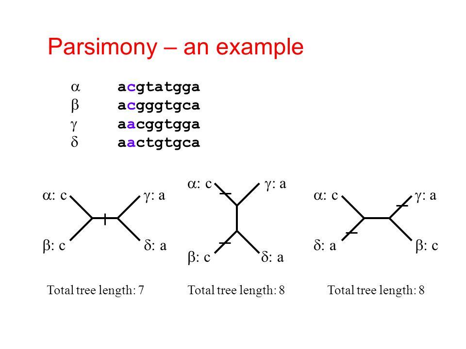 Parsimony – an example  acgtatgga  acgggtgca  aacggtgga  aactgtgca  : c  : c  : a  : a  : c  : c  : a  : a  : c  : a  : a  : c Total tree length: 7Total tree length: 8