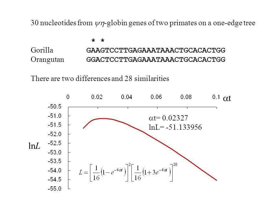 30 nucleotides from  -globin genes of two primates on a one-edge tree * * Gorilla GAAGTCCTTGAGAAATAAACTGCACACTGG Orangutan GGACTCCTTGAGAAATAAACTGCACACTGG There are two differences and 28 similarities tt lnL  t= 0.02327 lnL= -51.133956