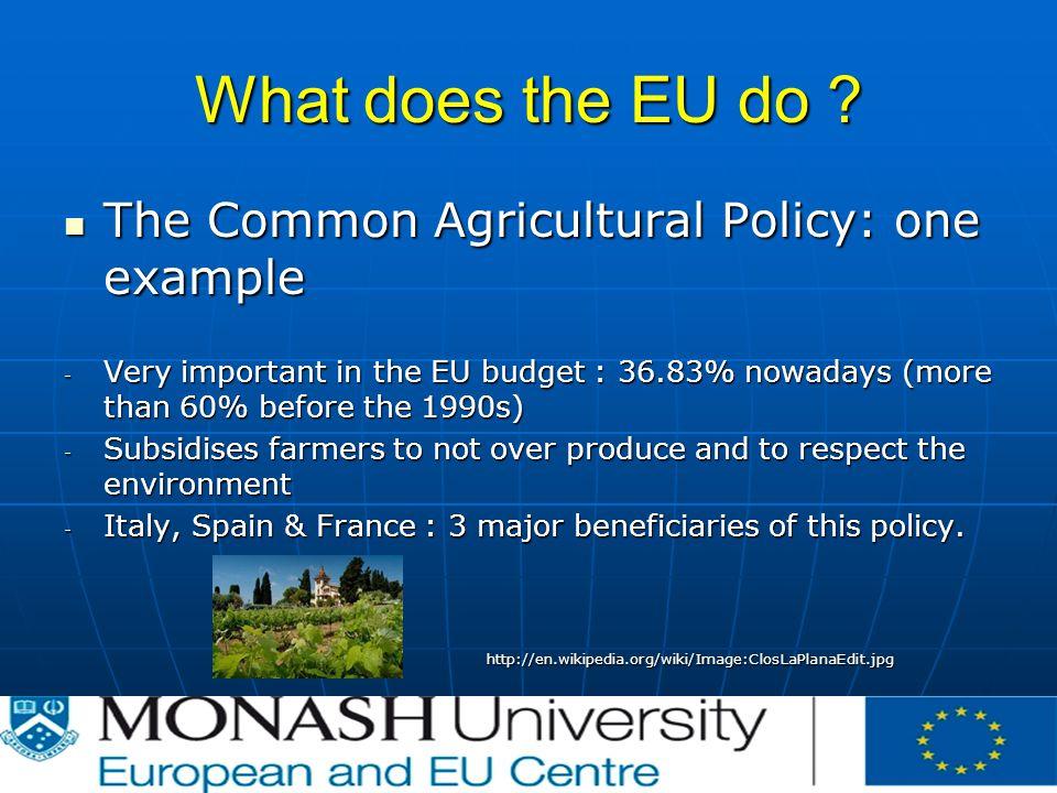What does the EU do .