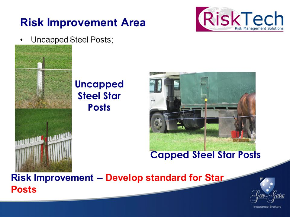 Uncapped Steel Posts; Risk Improvement Area Risk Improvement – Develop standard for Star Posts Uncapped Steel Star Posts Capped Steel Star Posts
