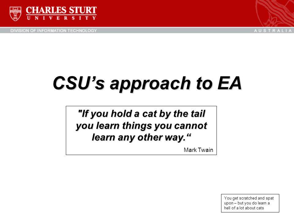 CSU's approach to EA
