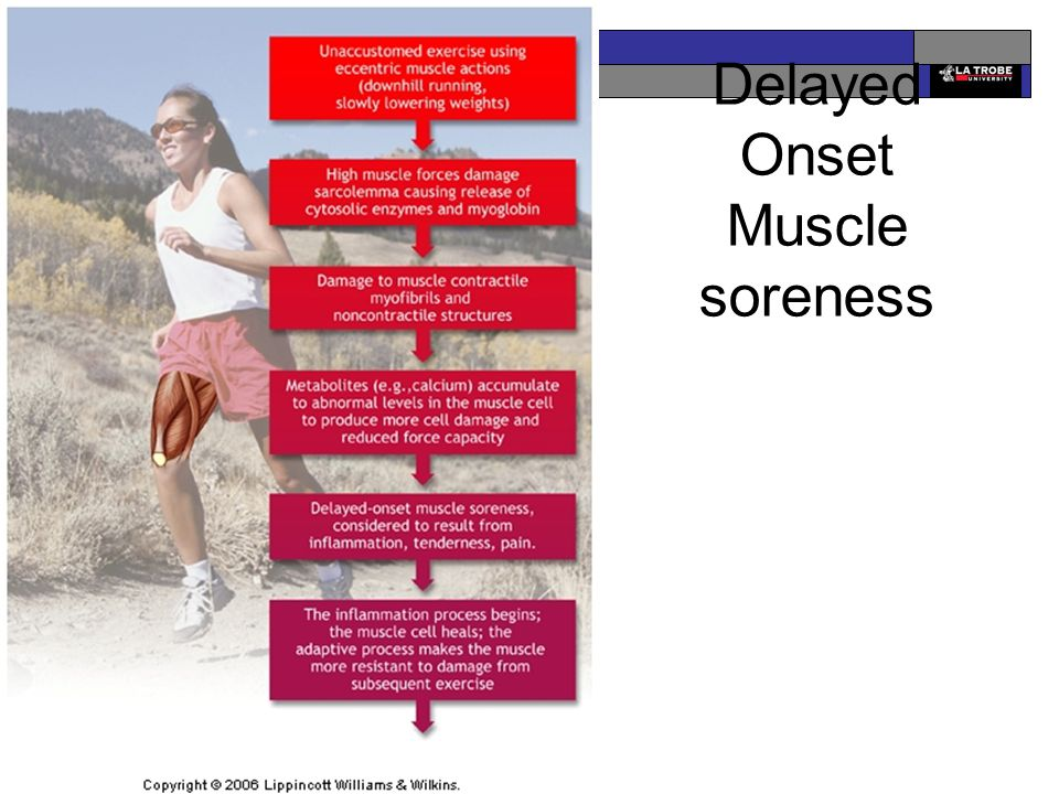 EDU2EXP Exercise & Performance Delayed Onset Muscle soreness