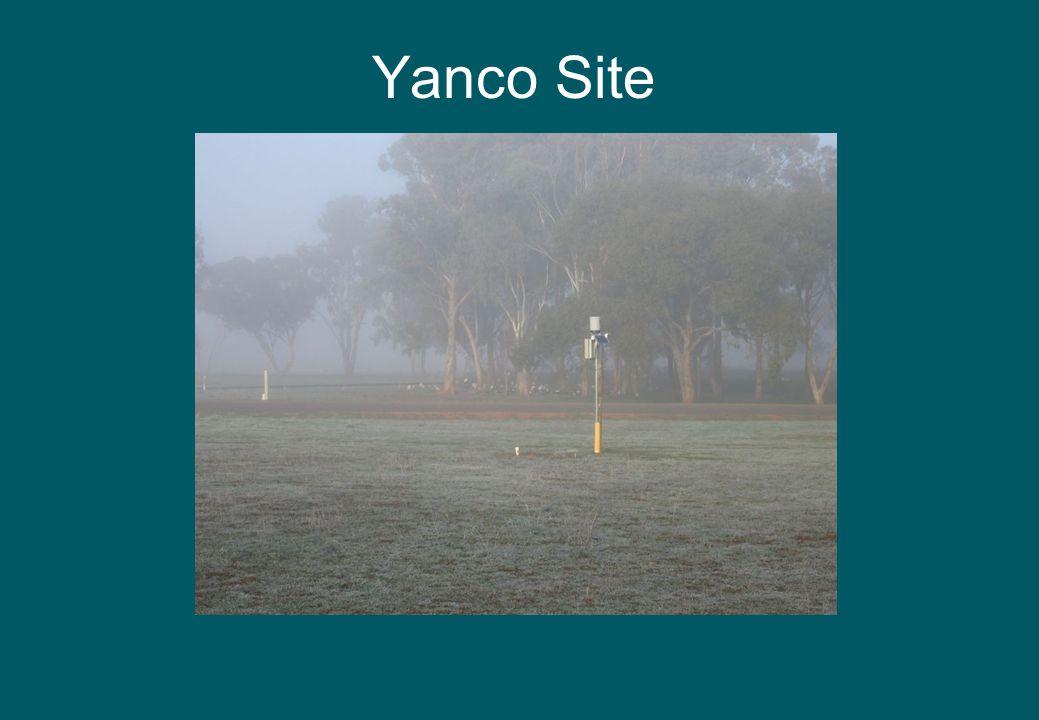 Yanco Site