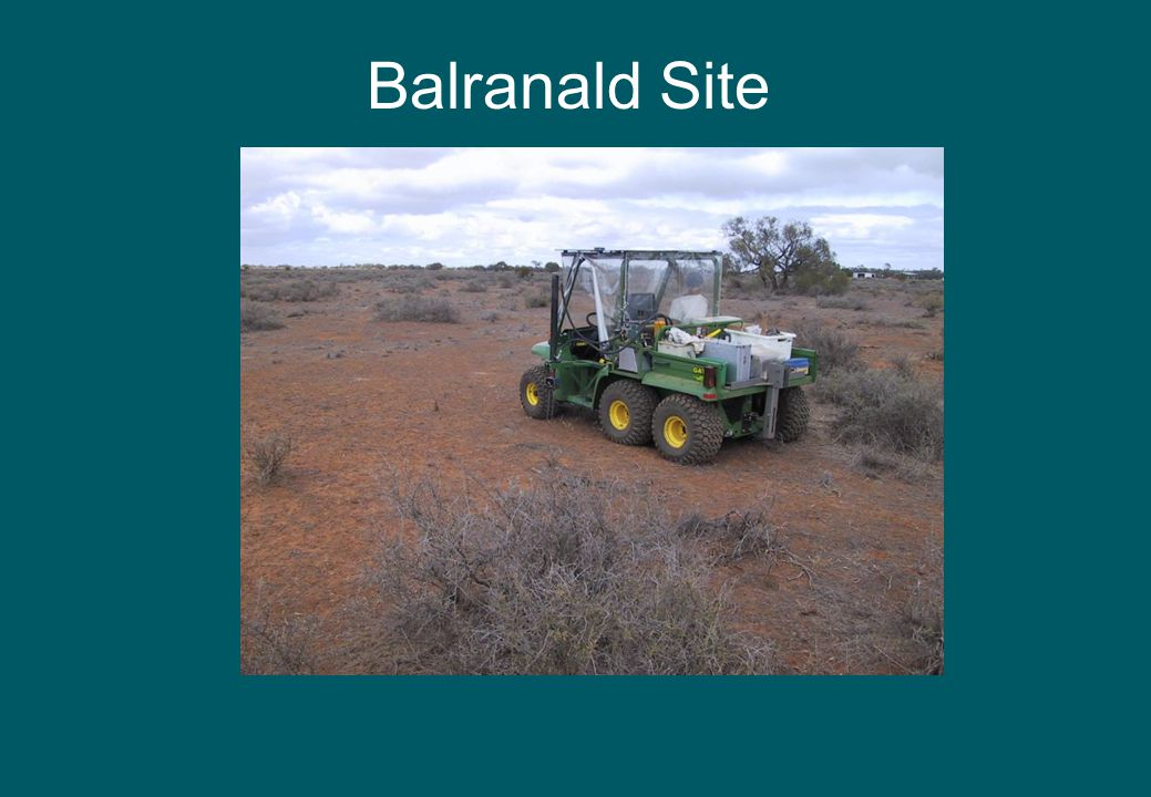 Balranald Site