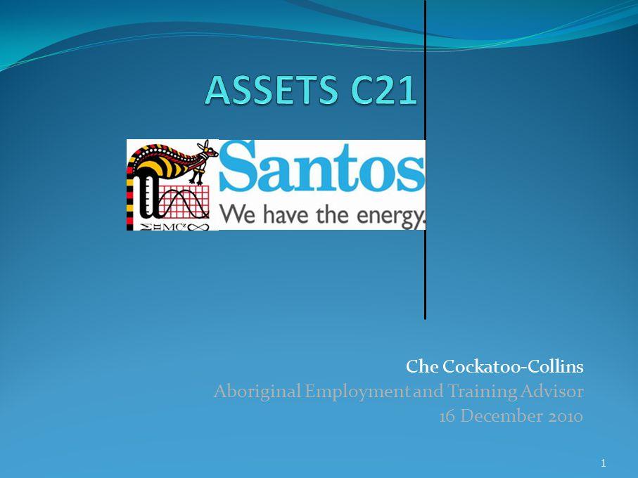 Che Cockatoo-Collins Aboriginal Employment and Training Advisor 16 December 2010 1