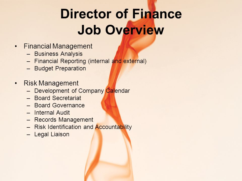 Director of Finance Job Overview Financial Management –Business Analysis –Financial Reporting (internal and external) –Budget Preparation Risk Management –Development of Company Calendar –Board Secretariat –Board Governance –Internal Audit –Records Management –Risk Identification and Accountability –Legal Liaison