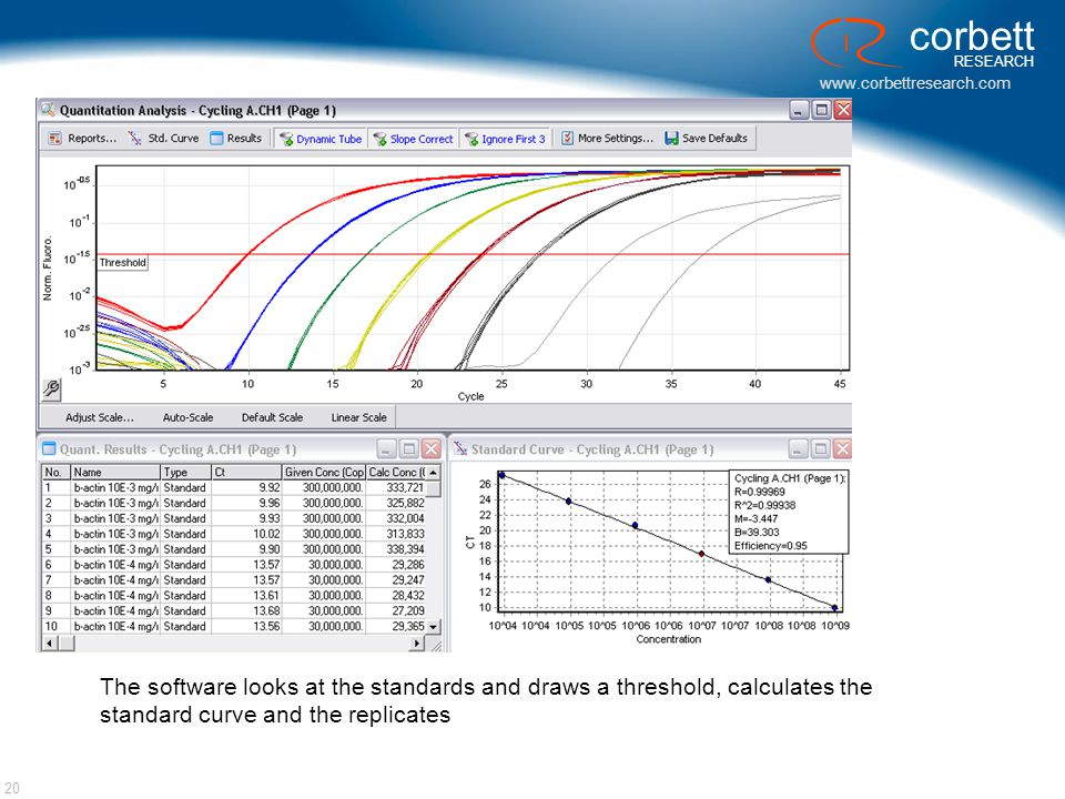 www.corbettresearch.com corbett RESEARCH 20 The software looks at the standards and draws a threshold, calculates the standard curve and the replicate