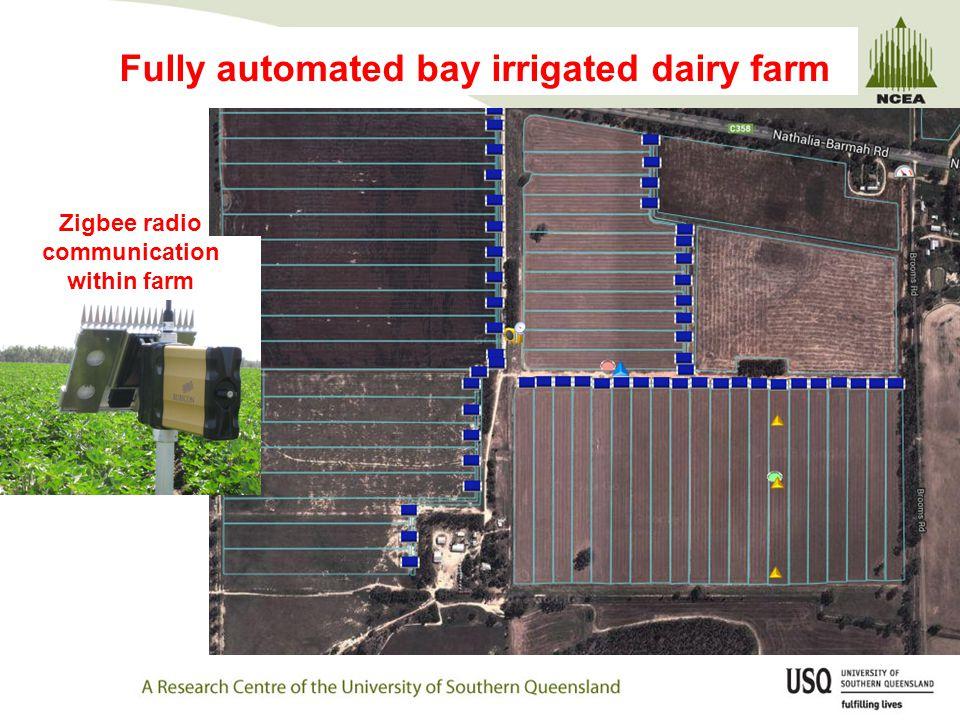Fully automated bay irrigated dairy farm Zigbee radio communication within farm