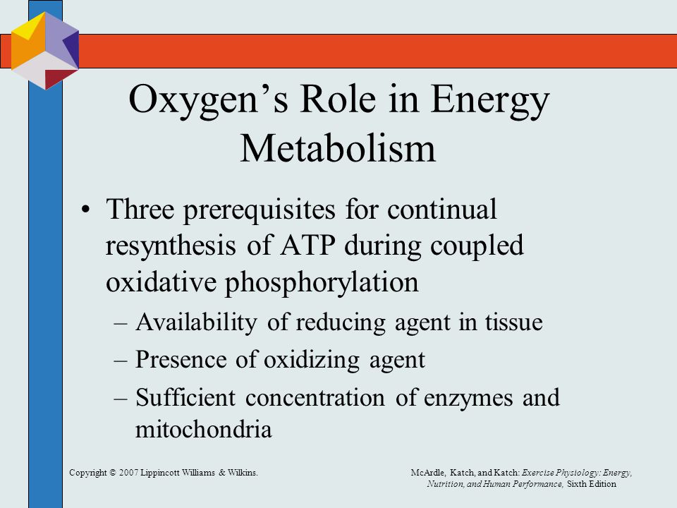Copyright © 2007 Lippincott Williams & Wilkins.McArdle, Katch, and Katch: Exercise Physiology: Energy, Nutrition, and Human Performance, Sixth Edition Oxygen's Role in Energy Metabolism Three prerequisites for continual resynthesis of ATP during coupled oxidative phosphorylation –Availability of reducing agent in tissue –Presence of oxidizing agent –Sufficient concentration of enzymes and mitochondria